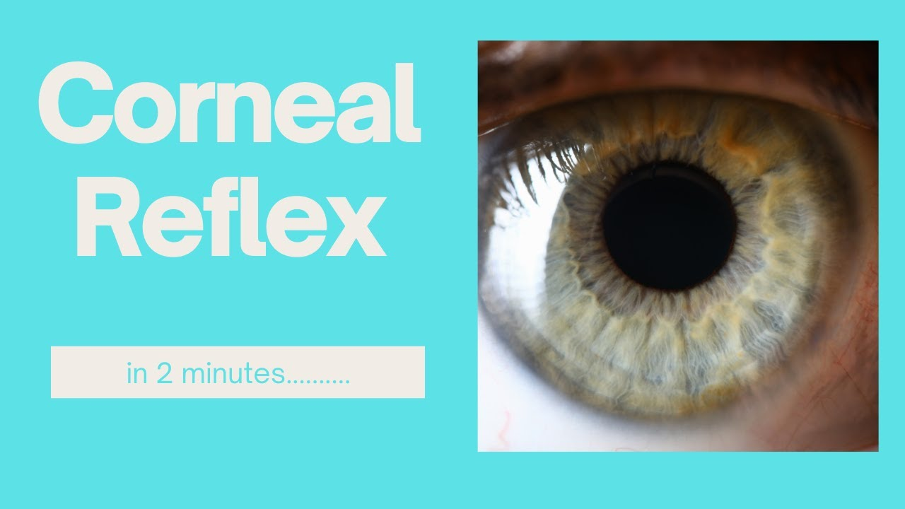 The corneal reflex in 2 minutes!