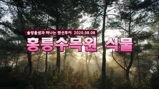 [숲노리TV] 솔방울샘과 떠나는 랜선투어 - 홍릉수목원…