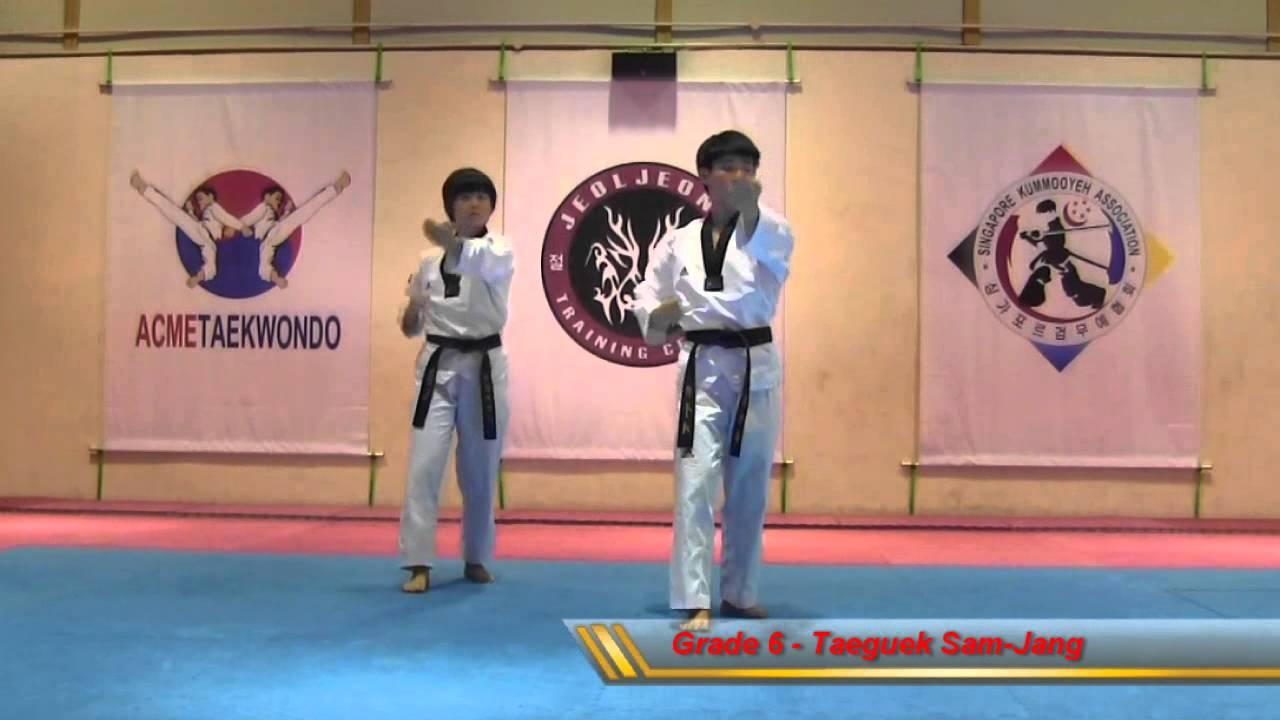 Taeguek Sam-Jang (Grade 6)