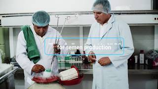 Biotechnology : Changing lives in Asia-Pacific |National Livestock Breeding Center, Nepal