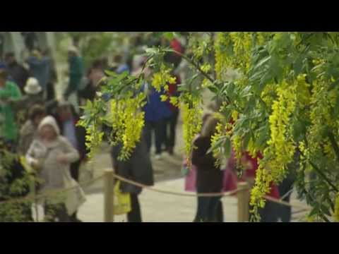 RTÉ at Bloom 2015