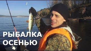 Ловля окуня с лодки осенью Улов 30 кг пеляди Рыбалка спиннингом на водохранилище с лодки КВХ
