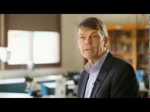 Doctor of Veterinary Medicine - The University of Melbourne