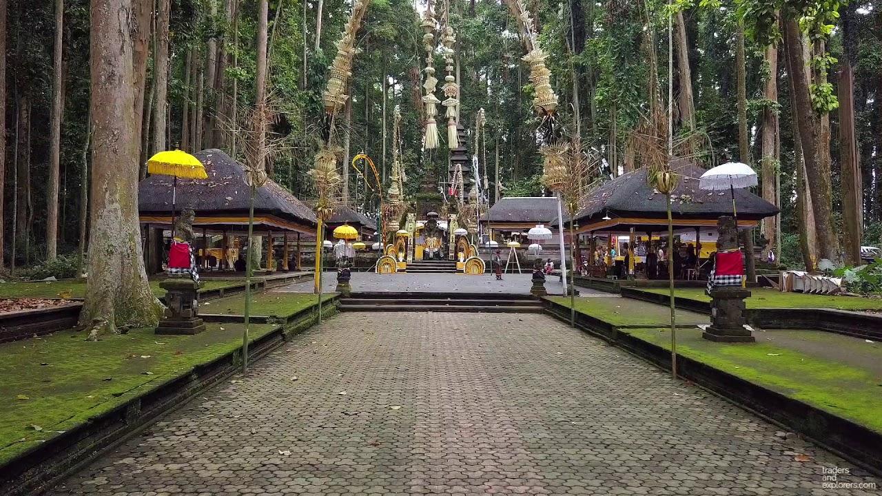 Bali Sangeh Monkey Forest Temple Dji Mavic Pro