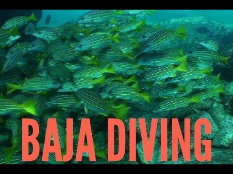 Traveling Baja California: Cabo Pulmo National Park