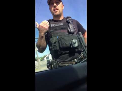 (2016)DRIVING WHILE BLACK RACIAL PROFILING TRAFFIC STOP*SHARE*
