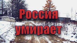 #деревня#россия             деревня в путинской россии ч.1