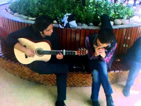 Harmonica chords songs