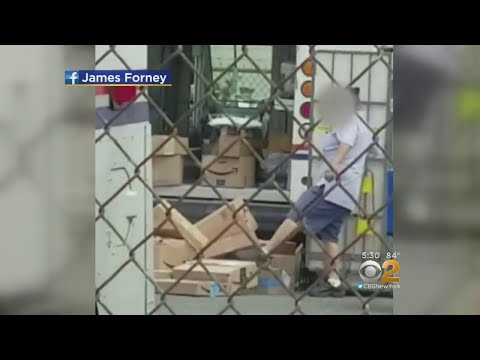 Caught On Camera: Postal Worker Tossing And Kicking Packages