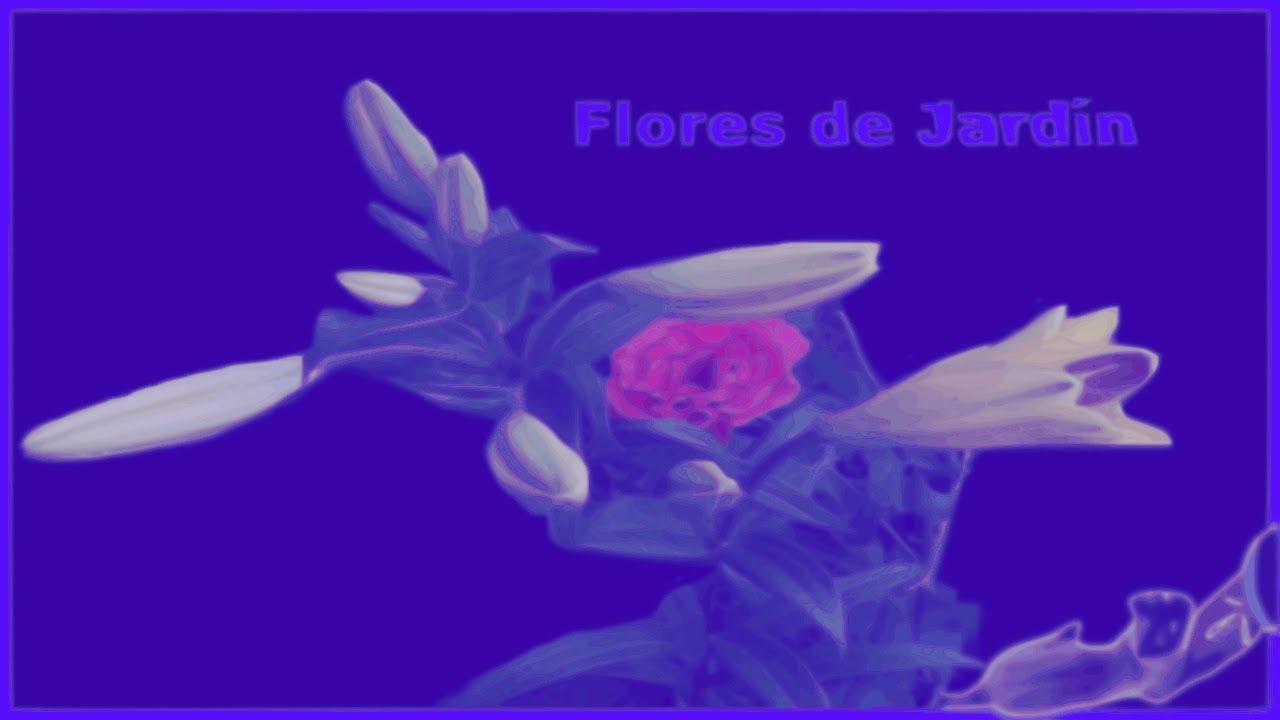 Flores de jard n varios tipos de flores con sus nombres - Clases de flores y sus nombres ...