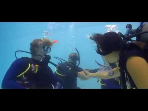 Making Scuba Diving a Career