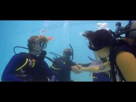 Making Scuba Diving a Career