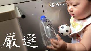 【いたずら】お気に入りの品物を見つけられて幸せ満開な一歳児✨ Happy to find your favorite plastic bottle