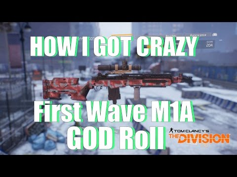 The Division | How I GOT CRAZY First Wave M1A GOD Roll