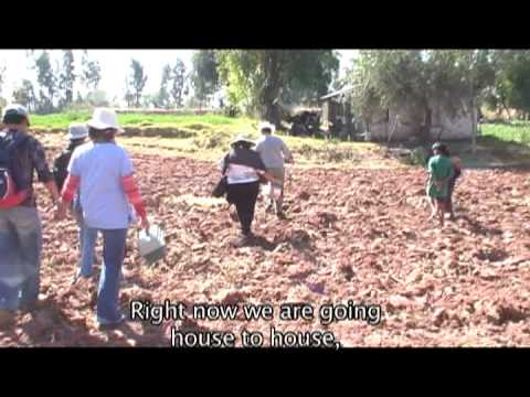 "Chagas Disease Documentary, Part I of 2, Bolivia, ""El Ultimo Beso"""