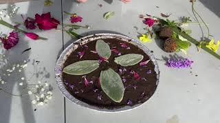Nature Mud Pie Art