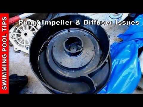 Pump Impeller & Diffuser Issues, Pool Pump Not Priming Part 6