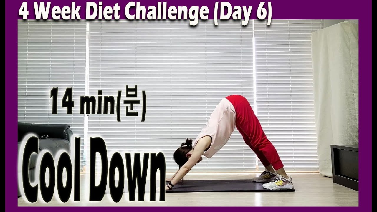[4 Week Diet challenge] Day 6-3 | 14 minute Stretching Workout | 14분 스트레칭 | ABS | Sunny Funny Zumba