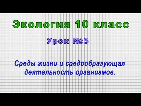 Экология 10 класс (Урок№5 - Среды жизни и средообразующая деятельность организмов.)