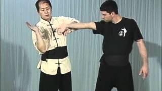 Tai Chi, Тай чи Ч8 Dan Zhi, Duo Zhi Wo 3, рычаг пальцев от захвата