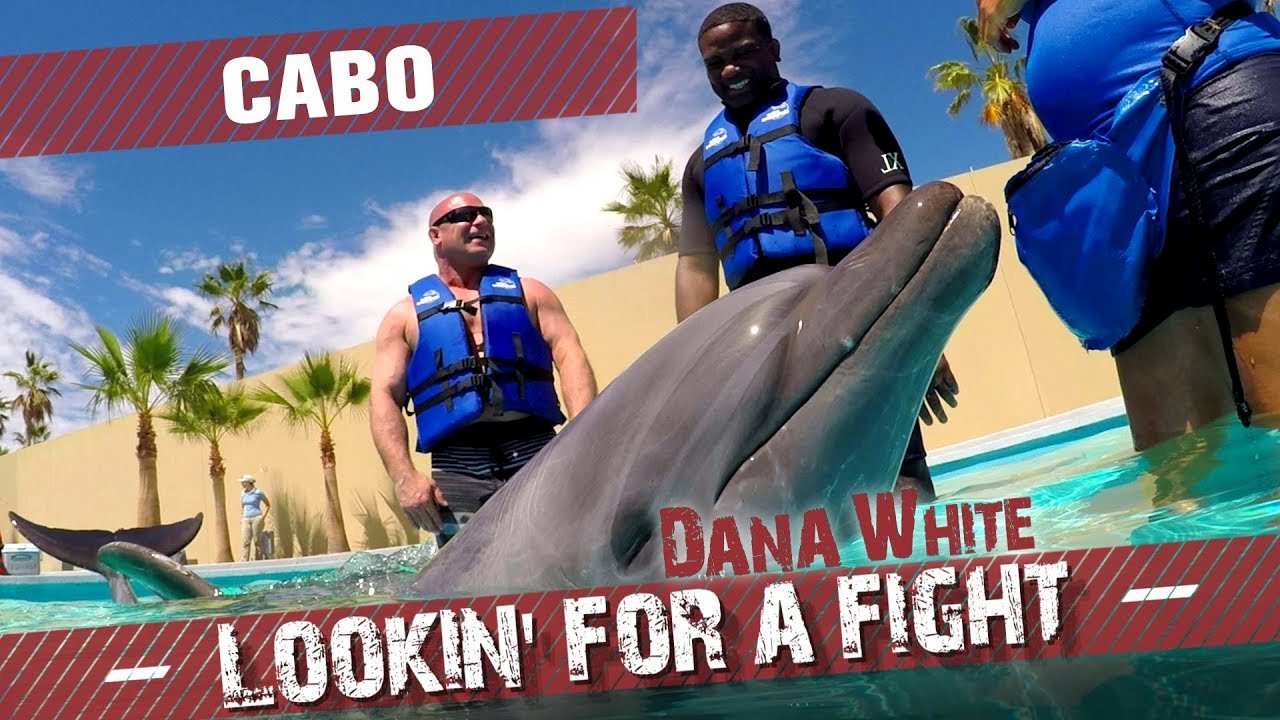 Download Dana White: Lookin' for a Fight – Cabo
