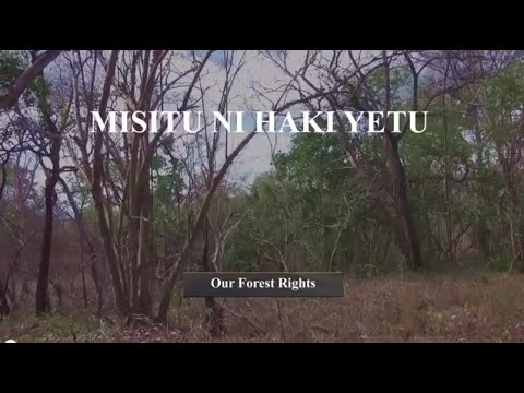 Our Forest Rights