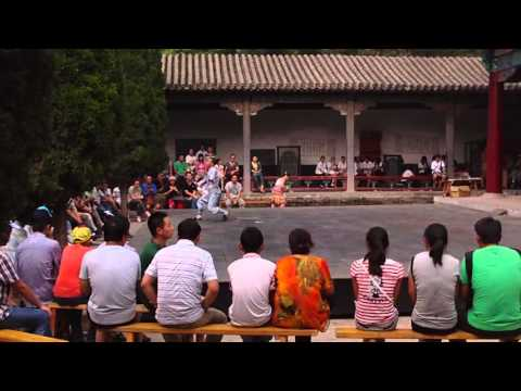 Shaolin Temple Wu Shu