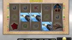 Endless Summer online spielen (Merkur Spielothek)