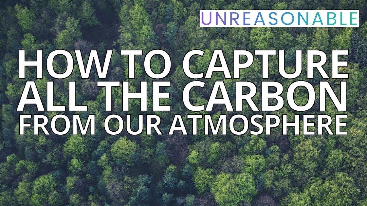 Biocarbon Engineering – an Unreasonable company
