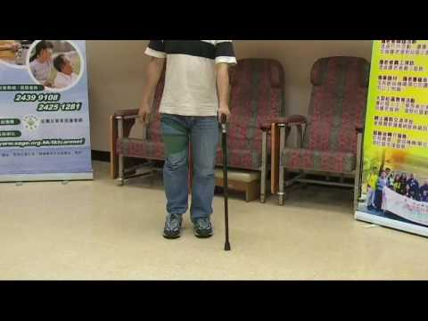 SAGE 2009 步行輔助器材:用士的輔助步行