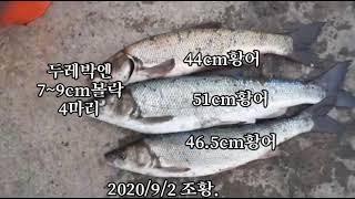 2020/9/2 삼척항 조황