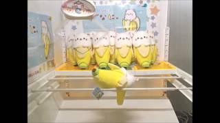 Gambar cover Toreba win: Bananya Huge Plush