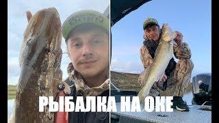 Джиговая раздача Щуки и Судака или рыбалка на реке Ока