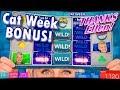Ellen, Will Ferrell & Amy Poehler's Spectacular Casino ...