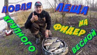 Ловля Леща Ранней Весной на Реке Северский Донец Фидерная Рыбалка 2020