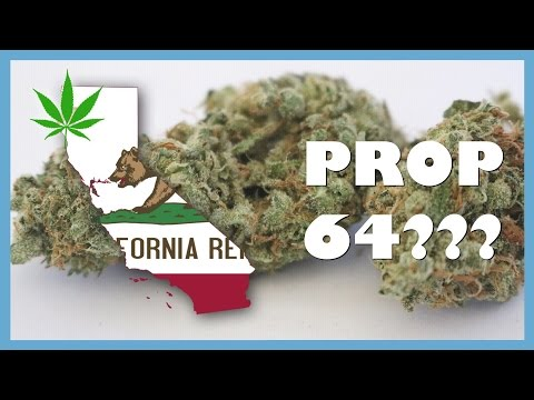 Is Prop 64 Right for California?? LEGALIZATION or NOT? | NewsNug