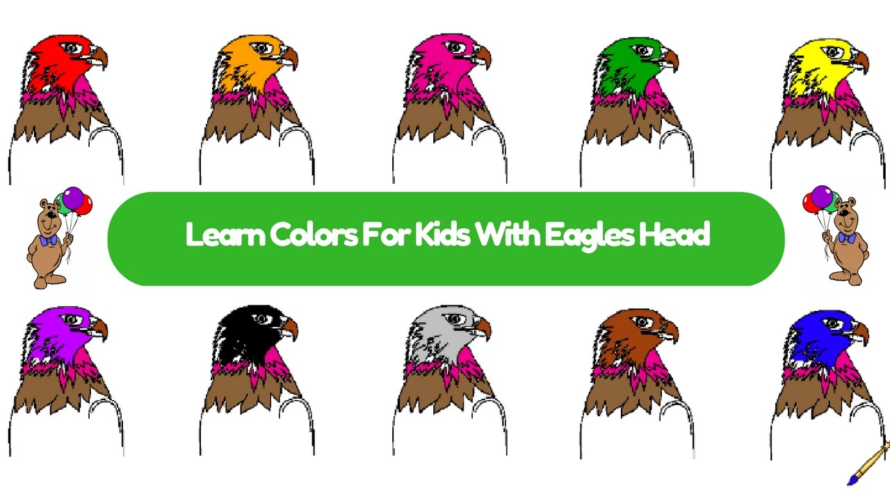 surprise kids hub  learn colors for kids and color eagle