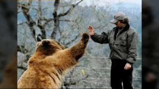 Дружба между человеком и диким животным существует :-) :-) :-)