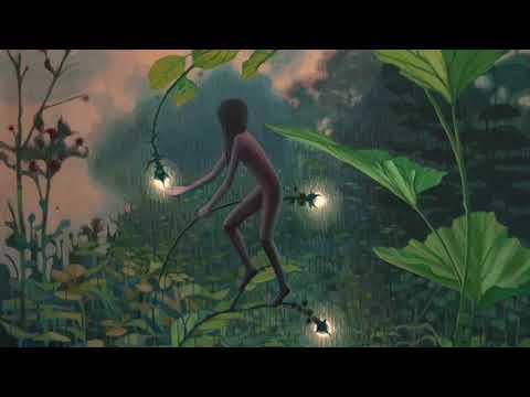 Apifera - Beyond the Sunrays