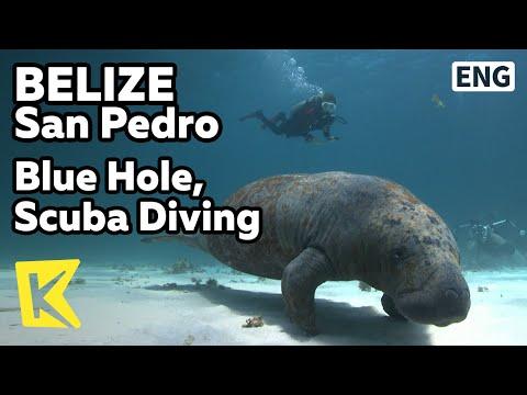 【K】Belize Travel-San Pedro[벨리즈 여행-산페드로]바다동굴 블루 홀, 스쿠버다이빙/Blue Hole, Scuba Diving/Sea Cave/Fish