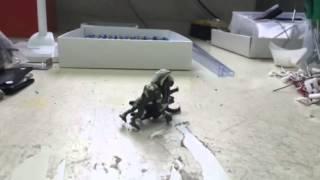 いま流行りの松崎しげるフィギュアを使った小ネタ動画です。