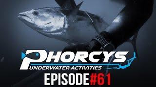 PHORCYS UNDERWATER ACTIVITIES - EPISODE#61