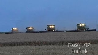 Davis Family Wheat Farm (Texas Country Reporter)