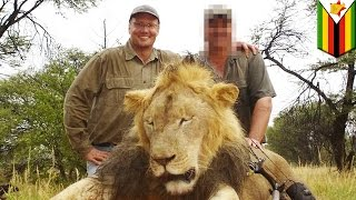アフリカ・ジンバブエの人気ライオンを射殺した米国人ハンターに非難が...