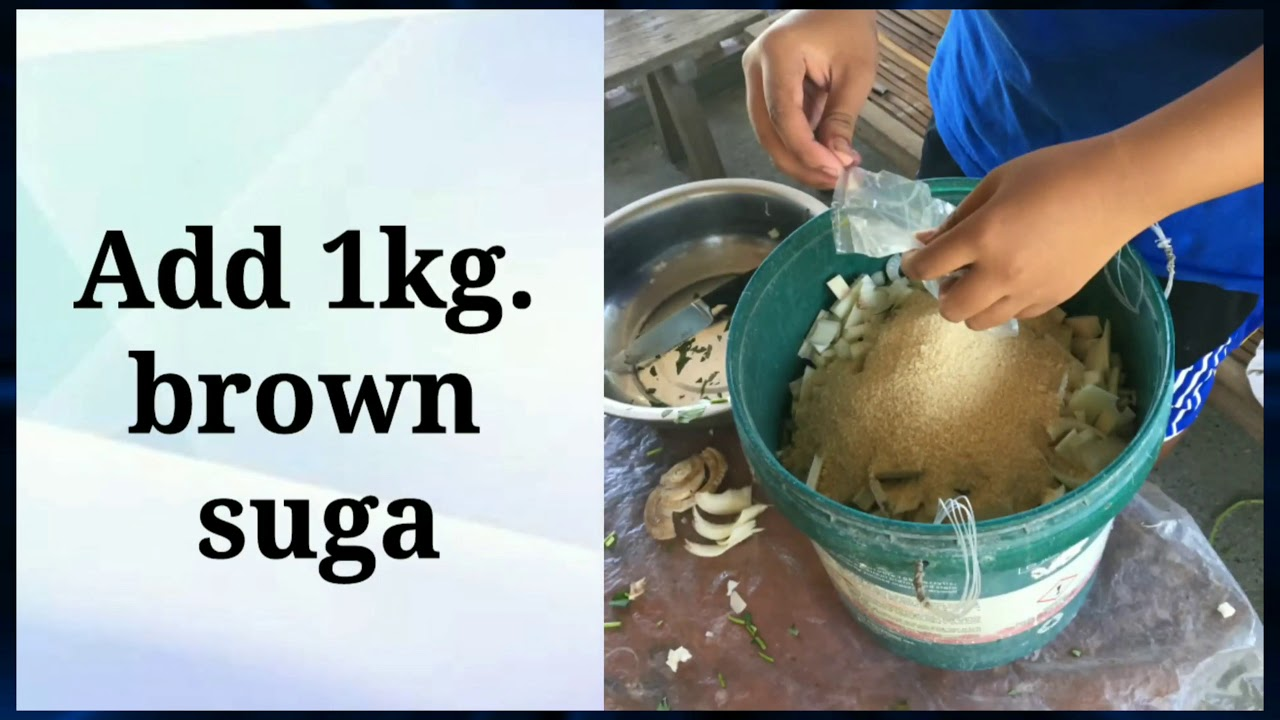 Download EASY STEPS HOW TO MAKE ORGANIC CONCOCTIONS and EXTRACTS