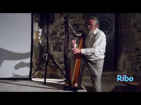 HARPE concert Dol de Bretagne - juin 2013.- Panasonic GH3  14-140mm