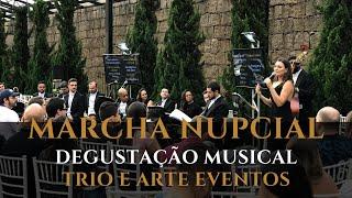 Marcha Nupcial - Eu fiz 5 mudanças no Trio e Arte pra ter esse resultado na entrada da noiva.