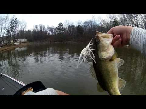 Bass Fishing Lake Bob Sandlin