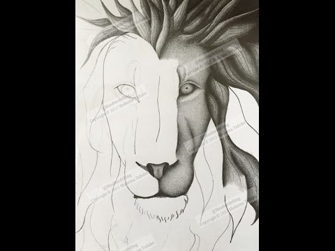 How to draw a lions face step by step by shahema