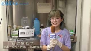 静岡大学夏季オープンキャンパス 2018 工学部電子物質科学科